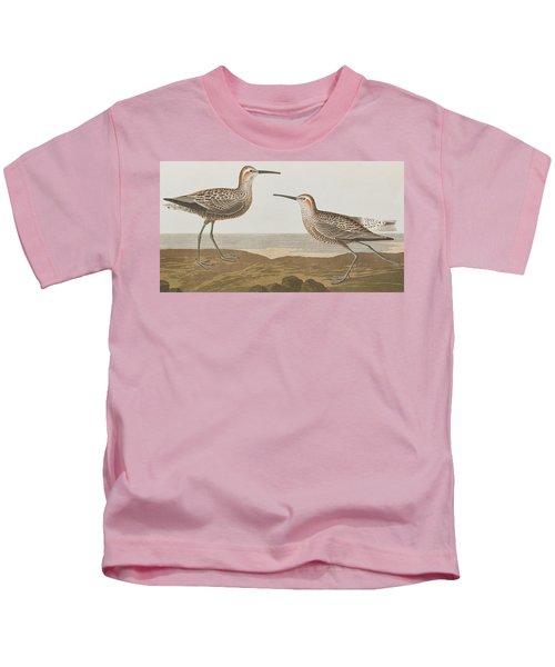 Long-legged Sandpiper Kids T-Shirt by John James Audubon