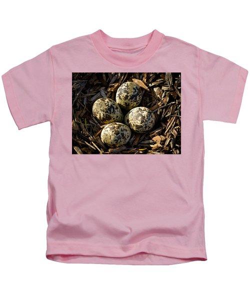 Quartet Of Killdeer Eggs By Jean Noren Kids T-Shirt by Jean Noren