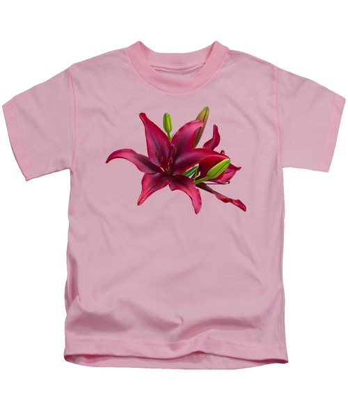 Red Lilies Kids T-Shirt by Jane McIlroy
