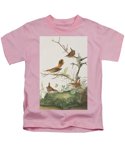 Winter Wren Or Rock Wren Kids T-Shirt by John James Audubon
