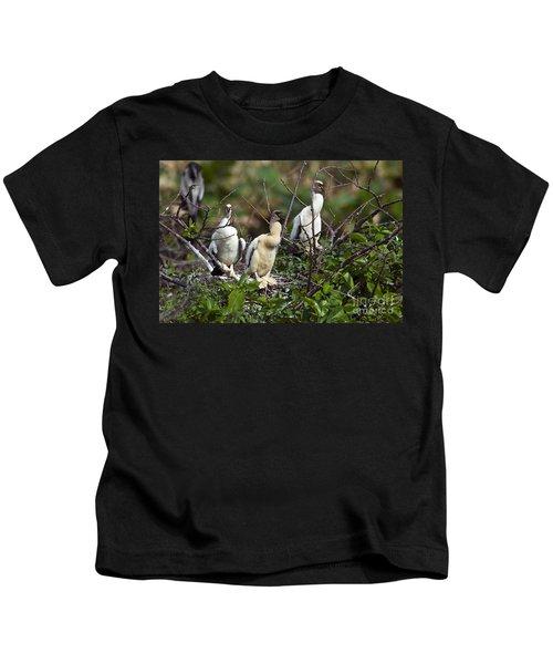 Baby Anhinga Kids T-Shirt by Mark Newman