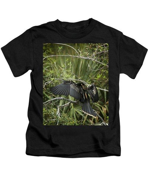 Anhinga Papa Kids T-Shirt by Phill Doherty