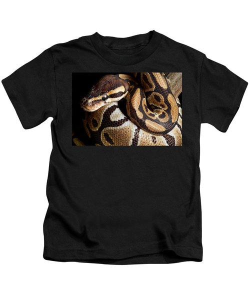 Ball Python Python Regius Kids T-Shirt by David Kenny