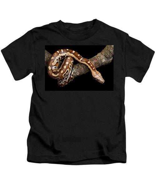 Blood Python Python Brongersmai Kids T-Shirt by David Kenny