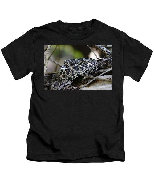 Eastern Diamondback-1 Kids T-Shirt by Rudy Umans