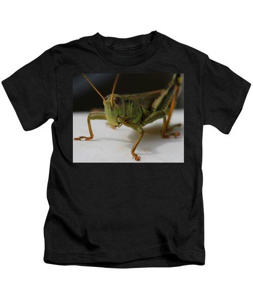 Grasshopper Kids T-Shirt by Dan Sproul