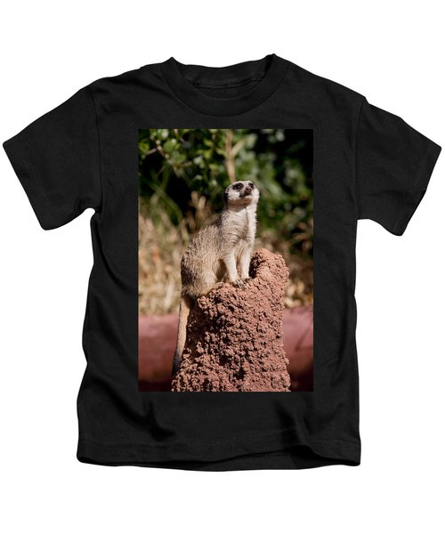 Lookout Post Kids T-Shirt by Michelle Wrighton