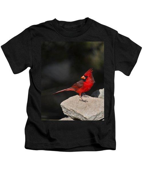 Male Cardinal Kids T-Shirt by Gary Langley