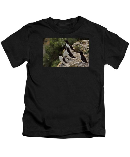 Razorbill Cliff Kids T-Shirt by Dreamland Media