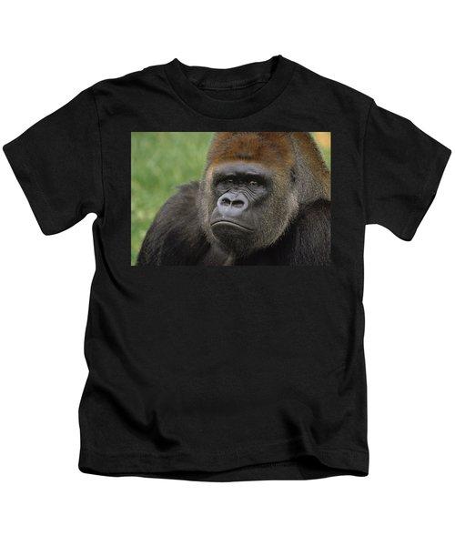 Western Lowland Gorilla Silverback Kids T-Shirt by Gerry Ellis
