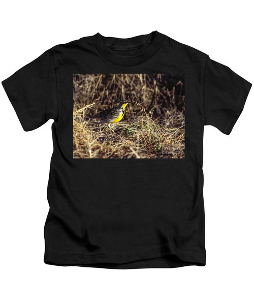 Western Meadowlark Kids T-Shirt by Steven Ralser