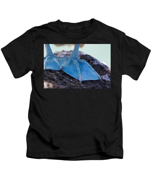 Blue Footed Booby Kids T-Shirt by Dave Fleetham