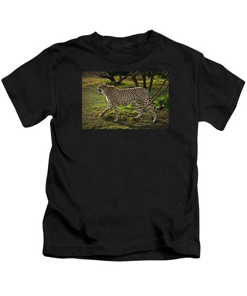 Cheetah  Kids T-Shirt by Garry Gay
