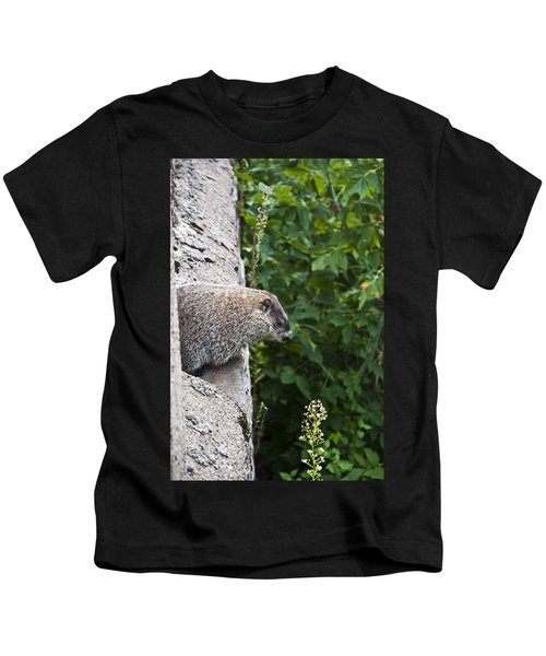 Groundhog Day Kids T-Shirt by Bill Cannon
