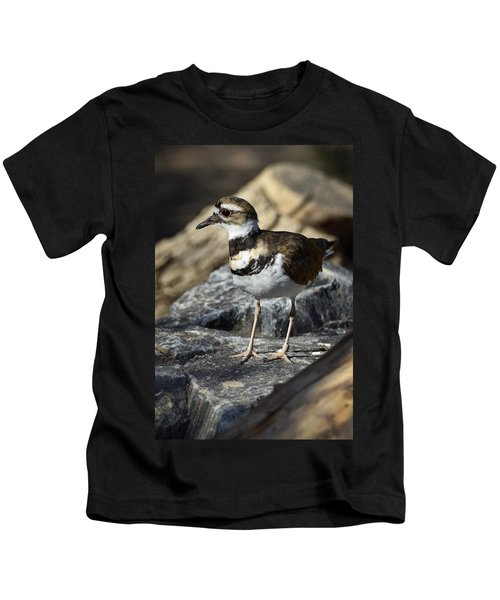 Killdeer Kids T-Shirt by Saija  Lehtonen