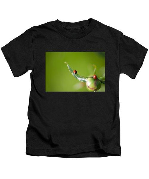 Ladybug On Flower Kids T-Shirt by Konstantin Sevostyanov