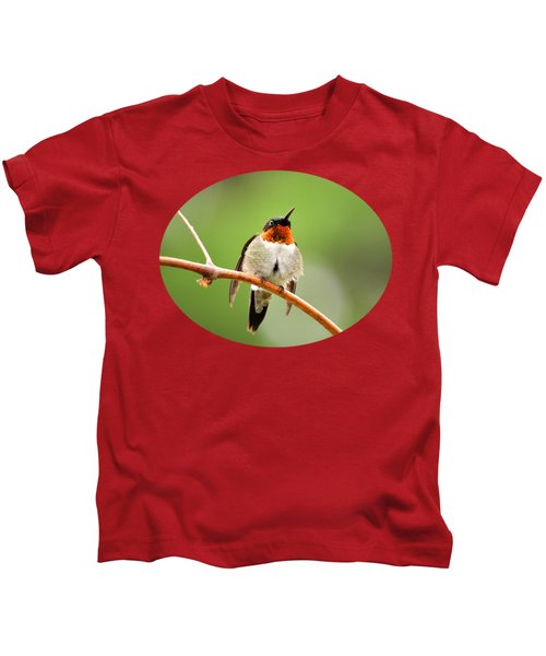 Male Ruby-throated Hummingbird Kids T-Shirt by Christina Rollo
