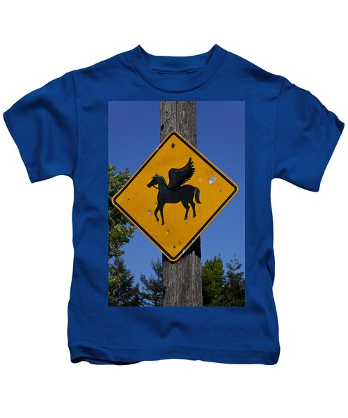 Pegasus Road Sign Kids T-Shirt by Garry Gay