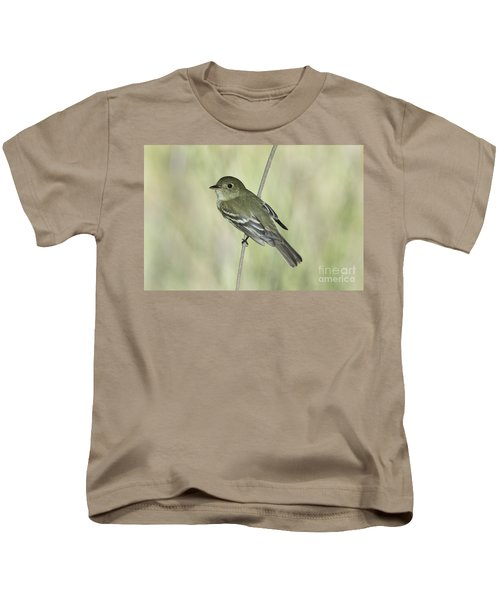 Acadian Flycatcher Kids T-Shirt by Anthony Mercieca
