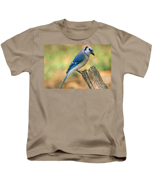 Blue Jay Kids T-Shirt by Millard H. Sharp