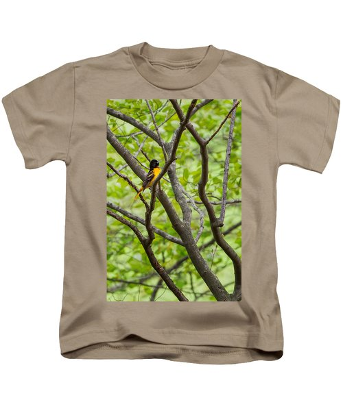 Baltimore Oriole Kids T-Shirt by Bill Wakeley