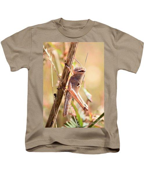 Grasshopper In The Marsh Kids T-Shirt by Carol Groenen