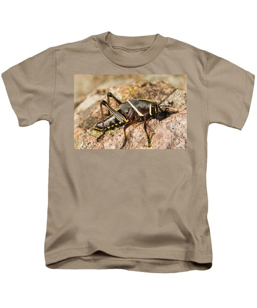 A Colorful Lubber Grasshopper Kids T-Shirt by Jack Goldfarb