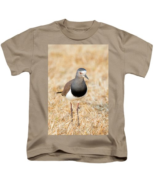 African Wattled Lapwing Vanellus Kids T-Shirt by Panoramic Images