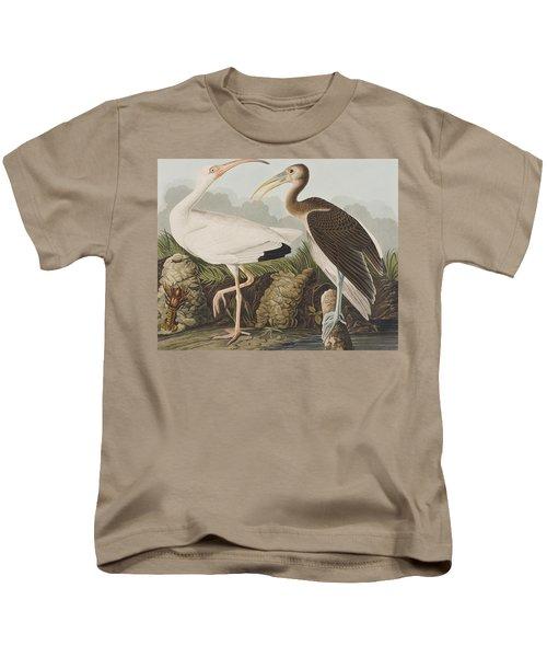 White Ibis Kids T-Shirt by John James Audubon