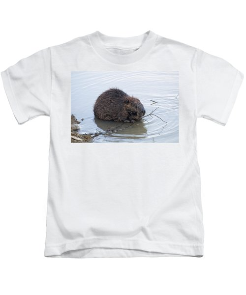 Beaver Chewing On Twig Kids T-Shirt by Chris Flees
