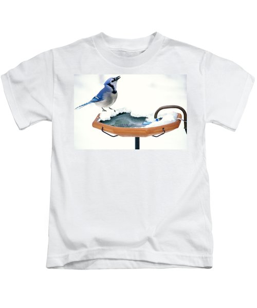 Blue Jay At Heated Birdbath Kids T-Shirt by Steve and Dave Maslowski