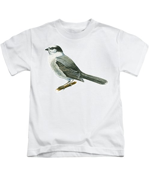 Canada Jay Kids T-Shirt by Anonymous