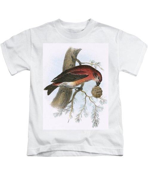 Crossbill Kids T-Shirt by English School