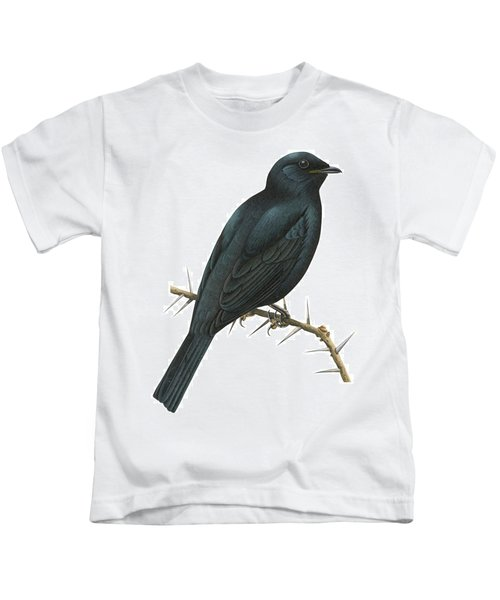 Cuckoo Shrike Kids T-Shirt by Anonymous