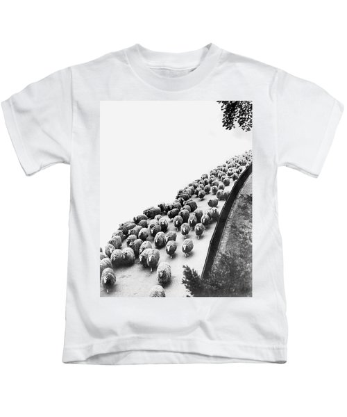 Hyde Park Sheep Flock Kids T-Shirt by Underwood Archives