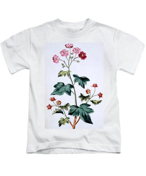 Sweet Canada Raspberry Kids T-Shirt by John Edwards