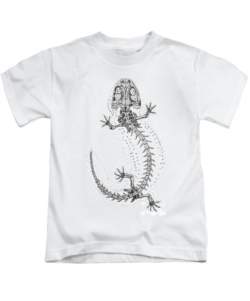 Cryptobranchus, Living Fossil Kids T-Shirt by Science Source