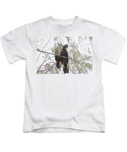 Red Tailed Black Cockatoos Kids T-Shirt by Douglas Barnard
