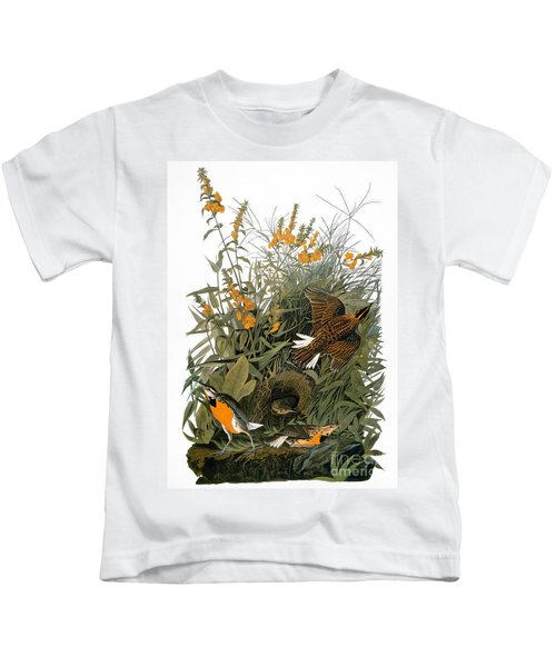 Audubon: Meadowlark Kids T-Shirt by Granger