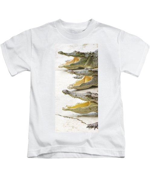Crocodile Choir Kids T-Shirt by Jorgo Photography - Wall Art Gallery