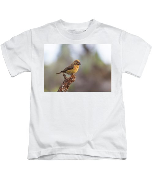 Juvenile Male Red Crossbill Kids T-Shirt by Doug Lloyd