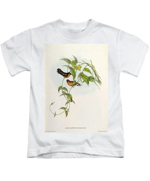 Leucippus Fallax Kids T-Shirt by John Gould