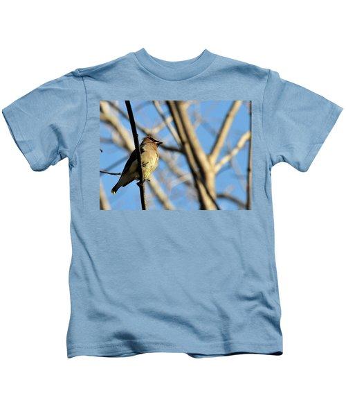 Cedar Wax Wing Kids T-Shirt by David Arment