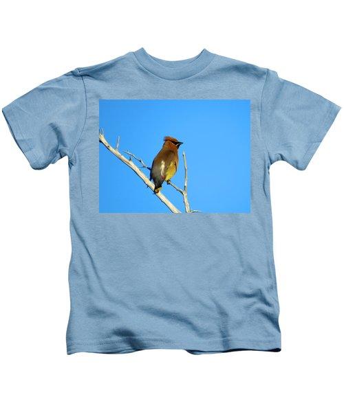 Cedar Waxwing Kids T-Shirt by Dianne Cowen