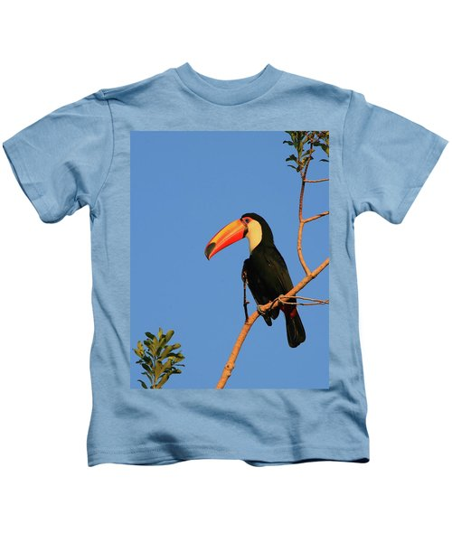 Toco Toucan Kids T-Shirt by Bruce J Robinson