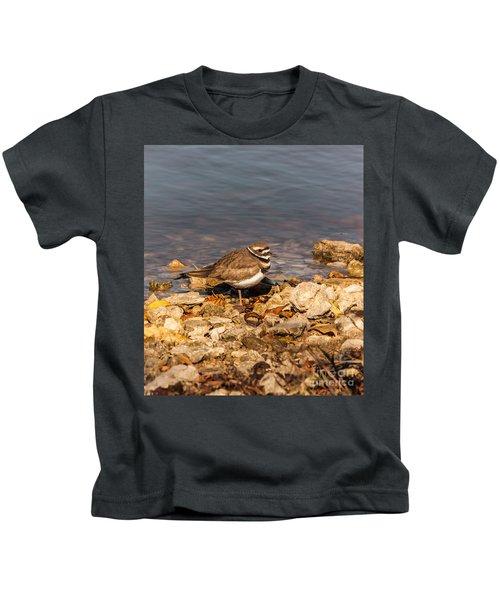 Kildeer On The Rocks Kids T-Shirt by Robert Frederick