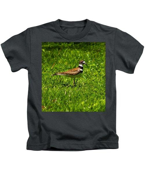 Killdeer Charadrius Vociferus 2 Kids T-Shirt by Howard Tenke