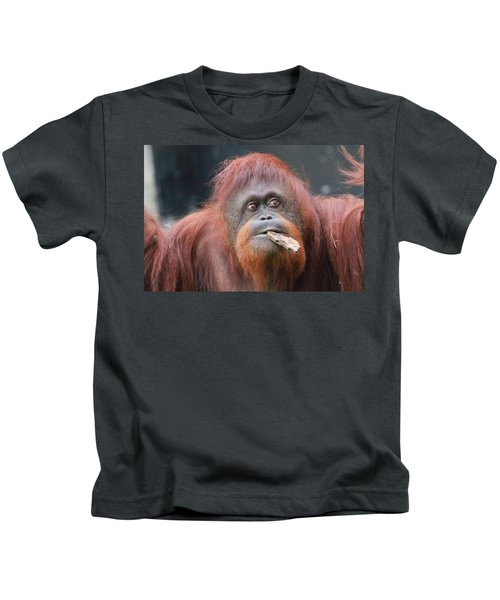 Orangutan Portrait Kids T-Shirt by Dan Sproul