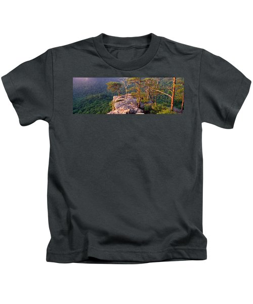 Trees On A Mountain, Buzzards Roost Kids T-Shirt by Panoramic Images