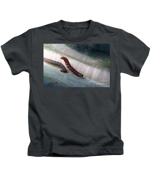 Diamondback Moth Larvae Kids T-Shirt by Science Source